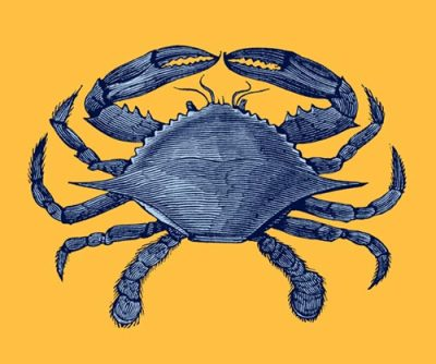 oldbookillustrations:  Blue crab, anyone? Also available as a greeting card, or a postcard. (I'll make Christmas cards in June.) Original wood engraving from Dictionnaire encyclopédique Trousset, Paris, 1886 - 1891.