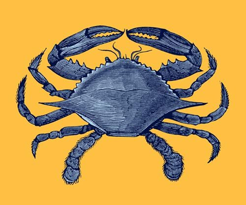 Blue crab, anyone?  Also available as a greeting card, or a postcard. (I'll make Christmas cards in June.)  Original wood engraving from Dictionnaire encyclopédique Trousset, Paris, 1886 - 1891.