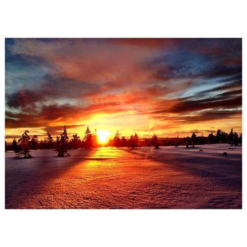 Sunset! #sunset #norway #fuckyeah #snow #biches