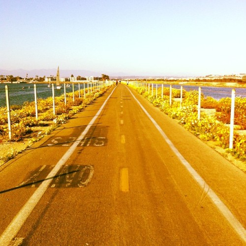 The road ahead… (at Marina Bike/ Ped Bridge @ Ballona Creek)