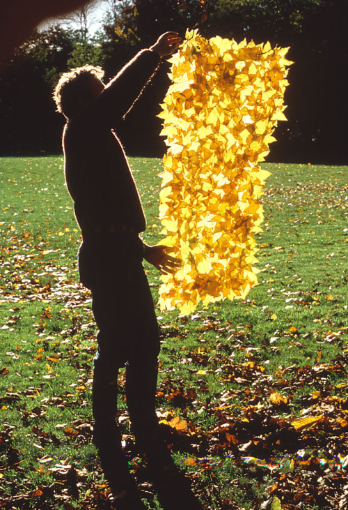 atavus:  Terry Friedman and Andy Goldsworthy - Hand to Earth: Andy Goldsworthy Sculpture, 1976-90