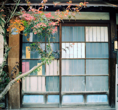 ileftmyheartintokyo:  untitled by *dapple dapple on Flickr.
