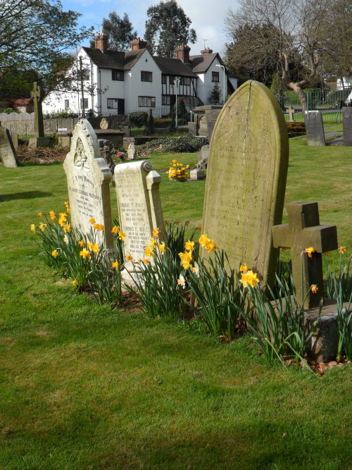 Churchyard with Daffodils, Mancetter Village, Leicestershire, England. All Original Photography by http://vwcampervan-aldridge.tumblr.com