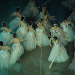 dustjacketattic:  Corps in La Giselle | by Mark Olich
