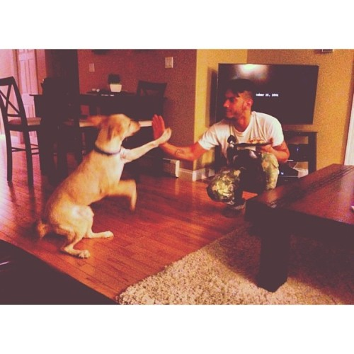 My little homie Finny likes to high5 🙌 … #dirtyradio #shaddy #mansbestfriend #highfive #high5