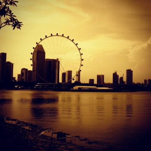 My island home. #Singapore #sg #travel #landscape #instagood #Asia #island #home #river