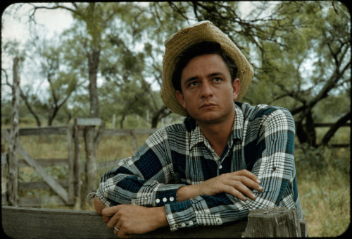 rulesformyunbornson:  Johnny Cash was a farmer.