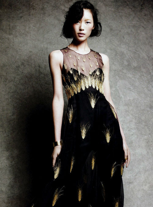 "liu wen in ""classics re-presented"" for vogue china feb 2011, photographed by victor demarchelier"