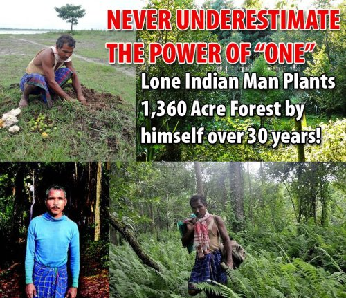 "super-goo:  foxyflowerchild:  Indian Man Single-Handedly Plants Entire 1,360 Acre Forest!Read his AMAZING story:A little over 30 years ago, a teenager named Jadav ""Molai"" Payeng began burying seeds along a barren sandbar near his birthplace in northern India's Assam region to grow a refuge for wildlife. Not long after, he decided to dedicate his life to this endeavor, so he moved to the site where he could work full-time creating a lush new forest ecosystem. Incredibly, the spot today hosts a sprawling 1,360 acre of jungle that Payeng planted single-handedly.It all started way back in 1979 when floods washed a large number of snakes ashore on the sandbar. One day, after the waters had receded, Payeng , only 16 then, found the place dotted with the dead reptiles. That was the turning point of his life.""The snakes died in the heat, without any tree cover. I sat down and wept over their lifeless forms. It was carnage. I alerted the forest department and asked them if they could grow trees there. They said nothing would grow there. Instead, they asked me to try growing bamboo. It was painful, but I did it. There was nobody to help me. Nobody was interested,"" says Payeng, now 47.While it's taken years for Payeng's remarkable dedication to planting to receive some well-deserved recognition internationally, it didn't take long for wildlife in the region to benefit from the manufactured forest. Demonstrating a keen understanding of ecological balance, Payeng even transplanted ants to his burgeoning ecosystem to bolster its natural harmony. Soon the shadeless sandbar was transformed into a self-functioning environment where a menagerie of creatures could dwell. The forest, called the Molai woods, now serves as a safe haven for numerous birds, deers, rhinos, tigers, and elephants — species increasingly at risk from habitat loss elsewhere.Despite the conspicuousness of Payeng's project, Forestry officials in the region first learned of this new forest in 2008 — and since then they've come to recognize his efforts as truly remarkable, but perhaps not enough.""We're amazed at Payeng,"" says Assistant Conservator of Forests, Gunin Saikia. ""He has been at it for 30 years. Had he been in any other country, he would have been made a hero."" Source  so amazing"