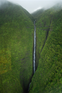 neekaisweird:  Falls over Molokai (by Natural World Gallery)