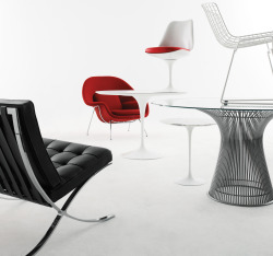 designwithinreach:Knoll at Design Within Reach