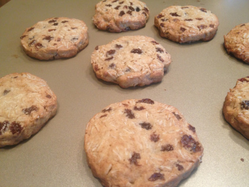 Slice-and-Bake Oatmeal-Raisin Cookies