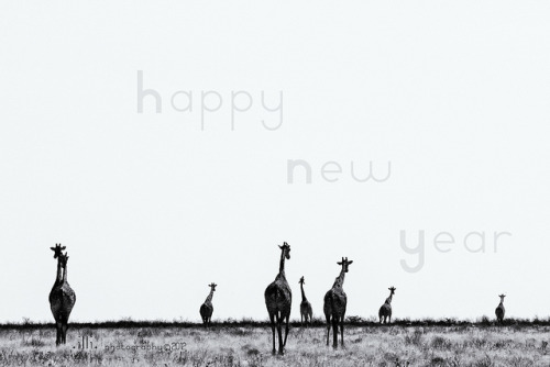 Going towards 2013 by ..illi.. on Flickr.