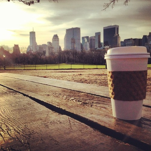 Good morning Thursday. #instagood #nyc #morning #god #weather #sun #tea
