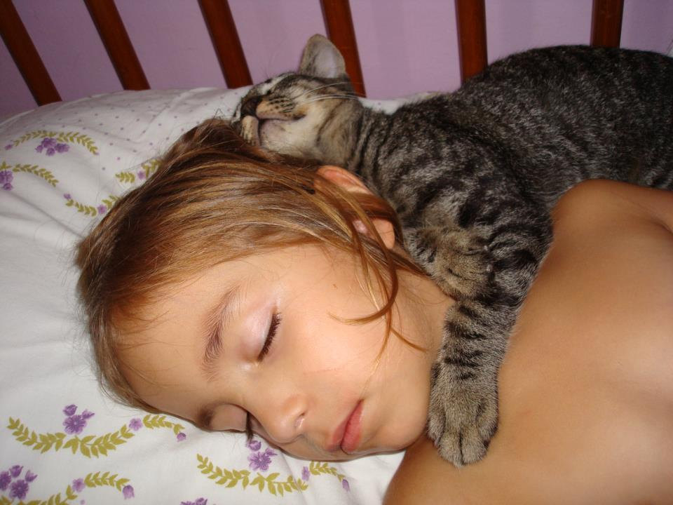 """Sleep, tiny human. I'll protect you."" Photo by ©Lilian Elias Stockler Felipe"