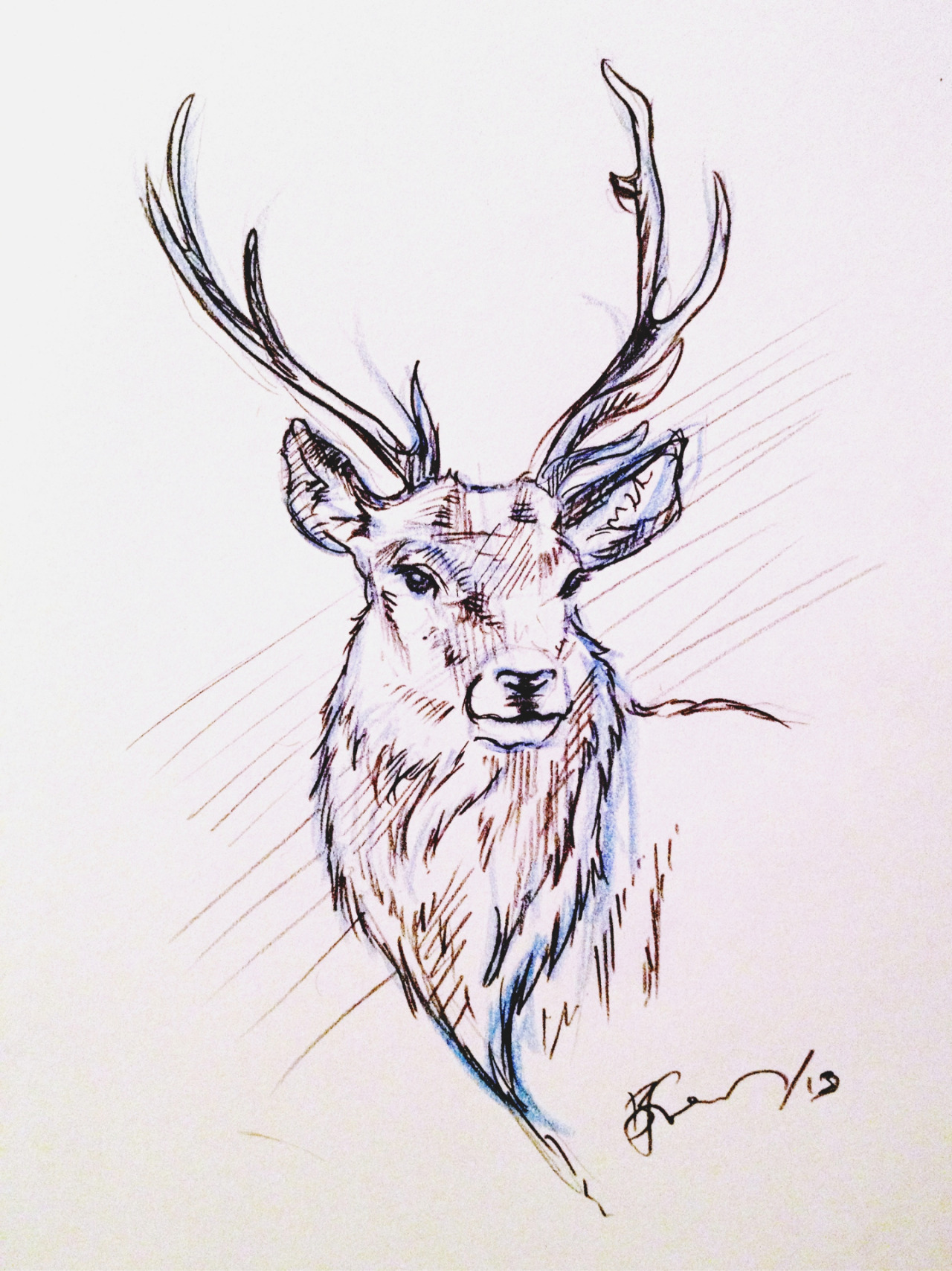 littlefreeman:  Oh deer oh deer oh deer Drawing to calm myself down