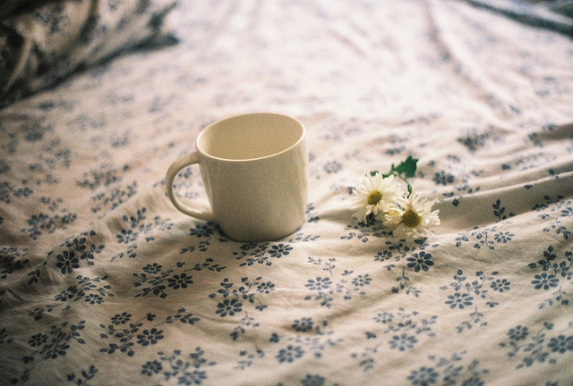 flowerswishes:  apolaroidview:  sunday morning by Vanessa Correia Rosa on Flickr.