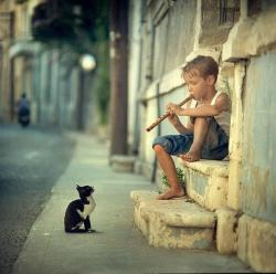 Artist and audience: little boy playing the flute, with an attentive cat [773x776] - Imgur
