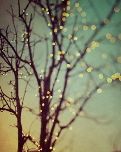 c-craazy:  Sparkle and dance by IrenaS on Flickr.