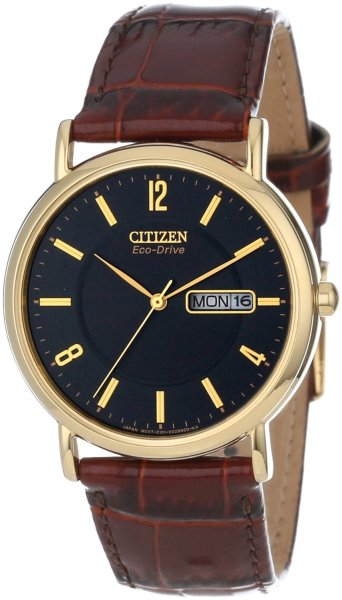 wantering:  Citizen Eco-Drive Gold-Tone Leather Watch