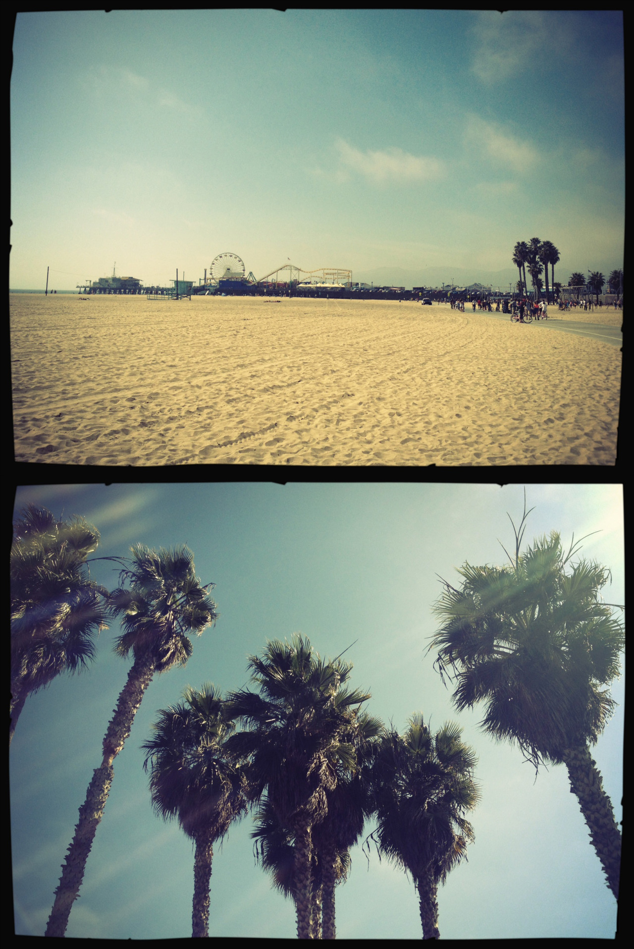 some snapshots from todays 5k run by the beach, another perfect day in sunny California!!
