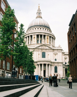 21vines:  st pauls cathedral4 (by bendisdonc)