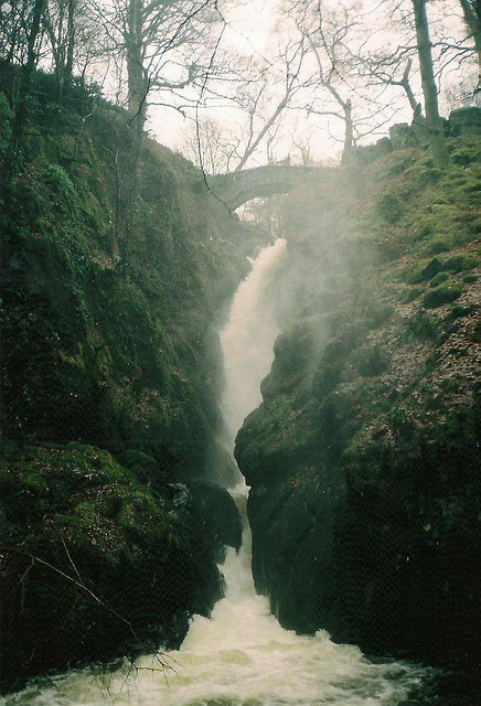 vacants:  untitled by Coucou Ma Petite on Flickr.