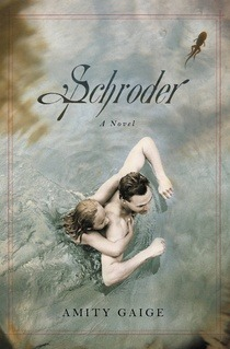 fiction-schroder-a-novel-by-amity-gaige-isbn