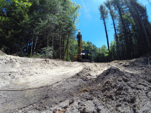 My childhood running trails are being destroyed.