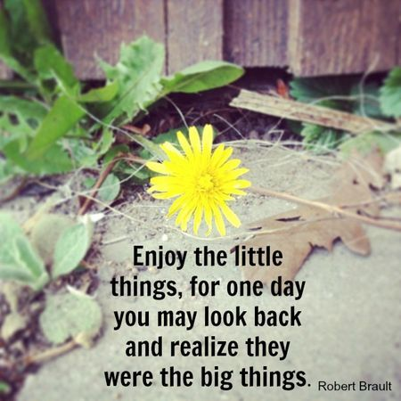 Enjoy the little thing… Source: Write.Click.Scrabook.