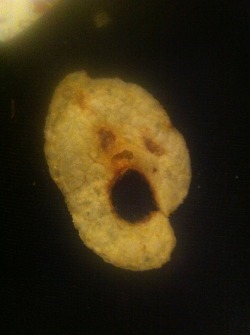 Ghost chip SnV