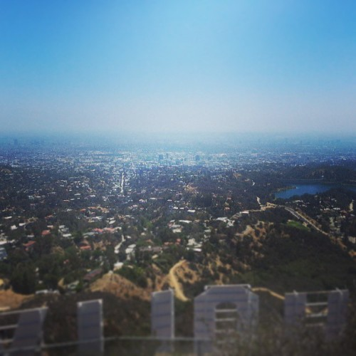 City of Angels. #Hollywood #LA #hike #hurtssogood #datazz
