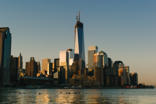 bijan:  Morning sun kissing New York City