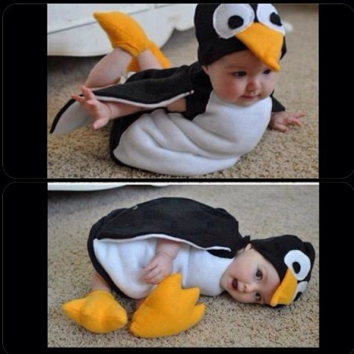 Hey kid, stop being so cute ;) #penguin #kiddo #cute #baby
