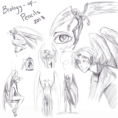biologyofpencils:  Some very pretty sketches I did today ♥ These are based on Maplevogels AU and have been drawn with permission. full size —> http://biology-of-pencils.deviantart.com/art/Nightmarebird-Mattie-373024512
