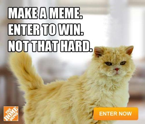 richardthecat:  Enter now: http://thd.co/11qIrYB