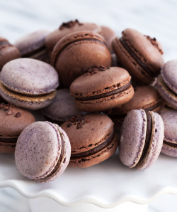 chocolateguru:  Chocolate & Hibiscus Macarons with Hibiscus-Infused Ganache