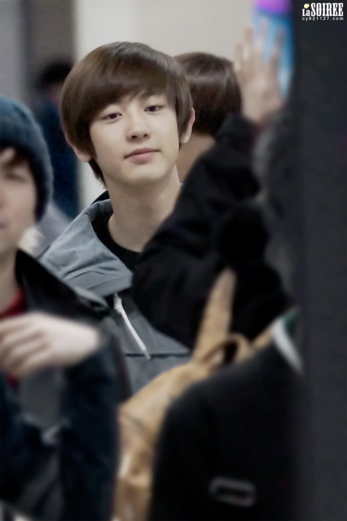 dailyexo:  Chanyeol - 121201 Incheon Airport, arrival from Hong Kong Credit: La Soiree (인천공항 입국)