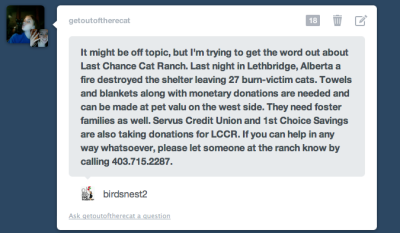 eleyndre:  getoutoftherecat:  for reblogging, by request  This happened in my home town. I'm devastated by it, and the woman who owns LCCR is out there looking for the lost cats, not even worrying about the personal possessions she lost. The entire non-profit organization was run by this wonderful woman, and it was a sanctuary for cats that were abandoned because they were seniors. At the time of the fire there were 60+ cats in the home, and the latest number is around 30 of them did not make it out alive. The rest are either missing, or being treated in the pet hospital down the road. The hospital is overwhelmed with 4 or 5 cats to a kennel, and staff are working tirelessly. The kitties are doing okay, but some of them are badly burned. There is a fund being set up to help take the burden off of the vet bills. (Think, 25+ cats, at least, being treated for smoke inhalation and burns. One of them 20 years old.) Information can be found here.FacebookNews Story I know it's asking a lot, but if anyone could donate, it would be wonderful. The paypal information is on the Facebook page.  I'm reblogging this from my personal blog, because it's important to me, even though I know that I don't post things like this, but this happened in my home town, and I want to do something to help, so even if you can just signal boost, please do.