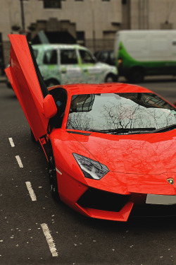 wormatronic:  Aventador | More