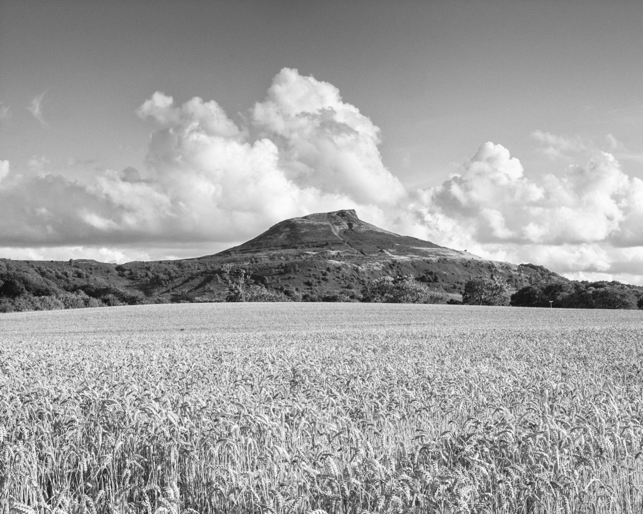 "SIGNIFICANT MOMENTS #5 Roseberry Topping, North Yorkshire UK also known as Yorkshire's Matterhorn... After my trip to Scotland I was set on buying Canon's then new EOS 5D MkIII. However, when I got to play with one I was bitterly disappointed with the quality of the build. It felt light and ""plastic-y"" and somehow it didn't feel comfortable in my hand. Now I had a dilemma; my entire kit was based on Canon stuff so if I was to change to another maker I would be spending significant money. I narrowed the field down to the 5D and Nikon's D700. As you'll know, the Nikon won out and I've not been disappointed at all. What a camera! It took me a little while to get my head around everything and even now I'm sure I'm only using it at a fraction of its capacity. The kit lens that came with the D700 was OK but not brilliant so I invested in the Nikkor 24-70 ƒ2.8G ED lens, which I use in almost all my landscape work. This is the first image I was truly satisfied with using the new pro kit. It's Roseberry Topping near Great Ayton in North Yorkshire and just seems to suit black and white on a warm summer afternoon."