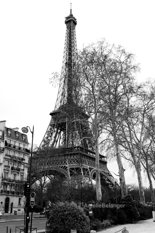 Paris… I love you The Eiffel Tower in Paris. A much needed escape from the gray skies of London.