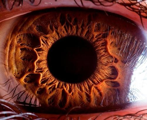 SLIDESHOW— Stunning close-ups of the human eye