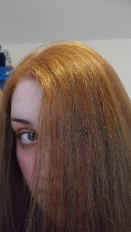 So the other day I tried dying my hair red and ended up with hot roots. Then used Colour B4 to try and fix it. Yeah. I ended up pretty ginger, as you can see. 1 pack of medium cool brown dye later, and I'm back to my original colour. Never going to try and make my hair look cool ever again.