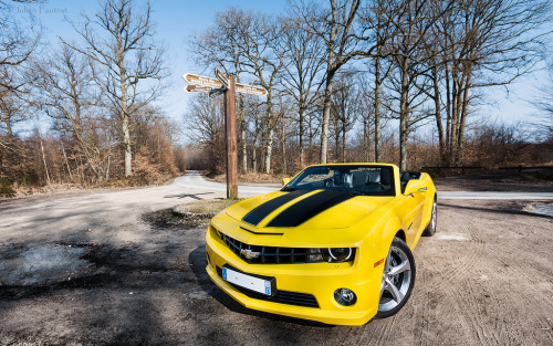 Unexpected hiker Starring: '13 Chevrolet Camaro SS Convertible (by Valkarth)