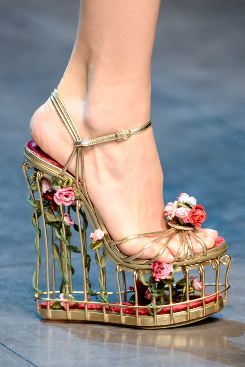 doe-eyes:  fashioninquality:  Shoe Porn at Dolce & Gabbana Fall Winter 2013 | MFW  oh  my  god