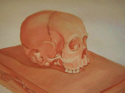 Skull still life. Pencil and watercolor This is actually the top half of the real skull used for the jaw