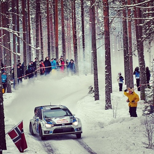 Volkswagen Polo in WRC Rally Sweden 2013