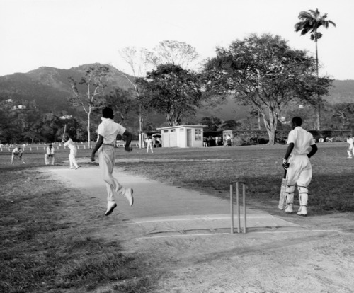 Game of cricket in Trinidad by State Library and Archives of Florida on Flickr.Look at the photo. What has just happened here? What is about to happen? Who has been in this place? Who will come here and and what will they do? What kinds of interactions can you imagine? Write one leaf beginning with what occurs to you upon looking, but do not allow yourself to be limited by what you see.Write One Leaf +about +ask +random +facebook +twitter   sponsors + You Are a Dog [ Kindle | Google | B&N | Kobo | iBookstore ]