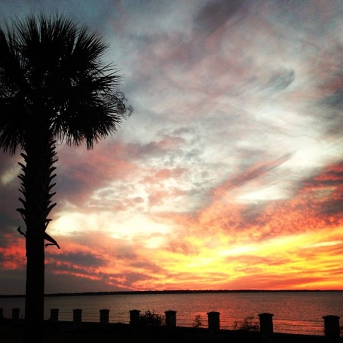 Charleston sunsets never get old. #CHS #islandlife #escapada #inspiration